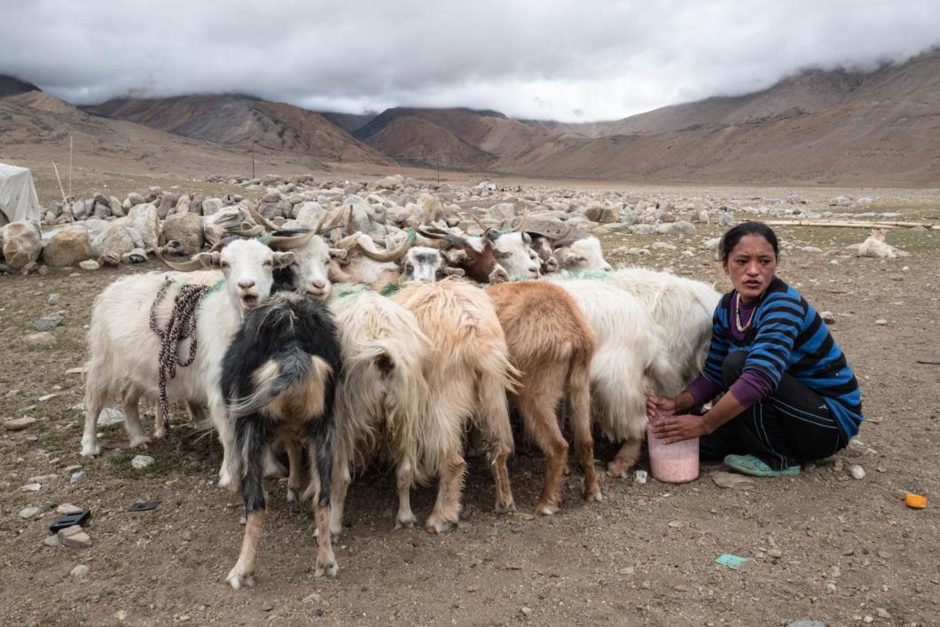 Ep.06 / Photographes documentaires et ONG : qui a besoin de qui ? (avec Régis Defurnaux)